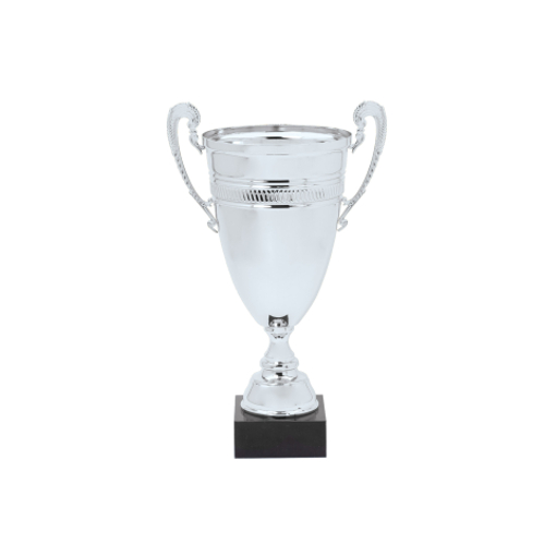 """DTC45-C 20"""" Silver Metal Cup"""