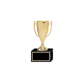 "7"" Gold Plastic Trophy Cup 