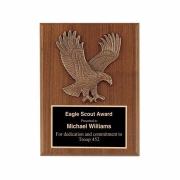 "Eagle Casting Plaque 6"" x 8"" 