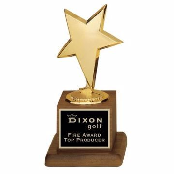 Modern Star Trophy | Engraving Included