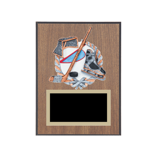 "6"" x 8"" Hockey Plaque with gold background plate, colored engraving plate and full color 3D resin Hockey medallion."