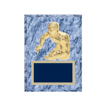 """6"""" x 8"""" Wrestling Plaque with gold background plate, colored engraving plate and gold 3D Wrestling medallion."""