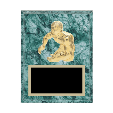 """7"""" x 9"""" Wrestling Plaque with gold background plate, colored engraving plate and gold 3D Wrestling medallion."""