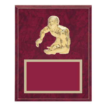 """8"""" x 10"""" Wrestling Plaque with gold background plate, colored engraving plate and gold 3D Wrestling medallion."""