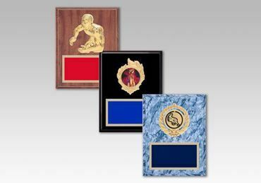 Picture for category Wrestling Plaques