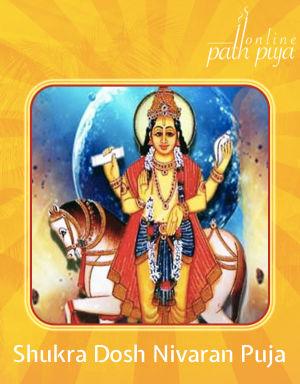 Shukra Dosh Nivaran Puja