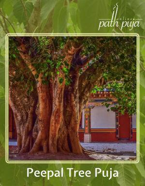 Pipal Tree Puja