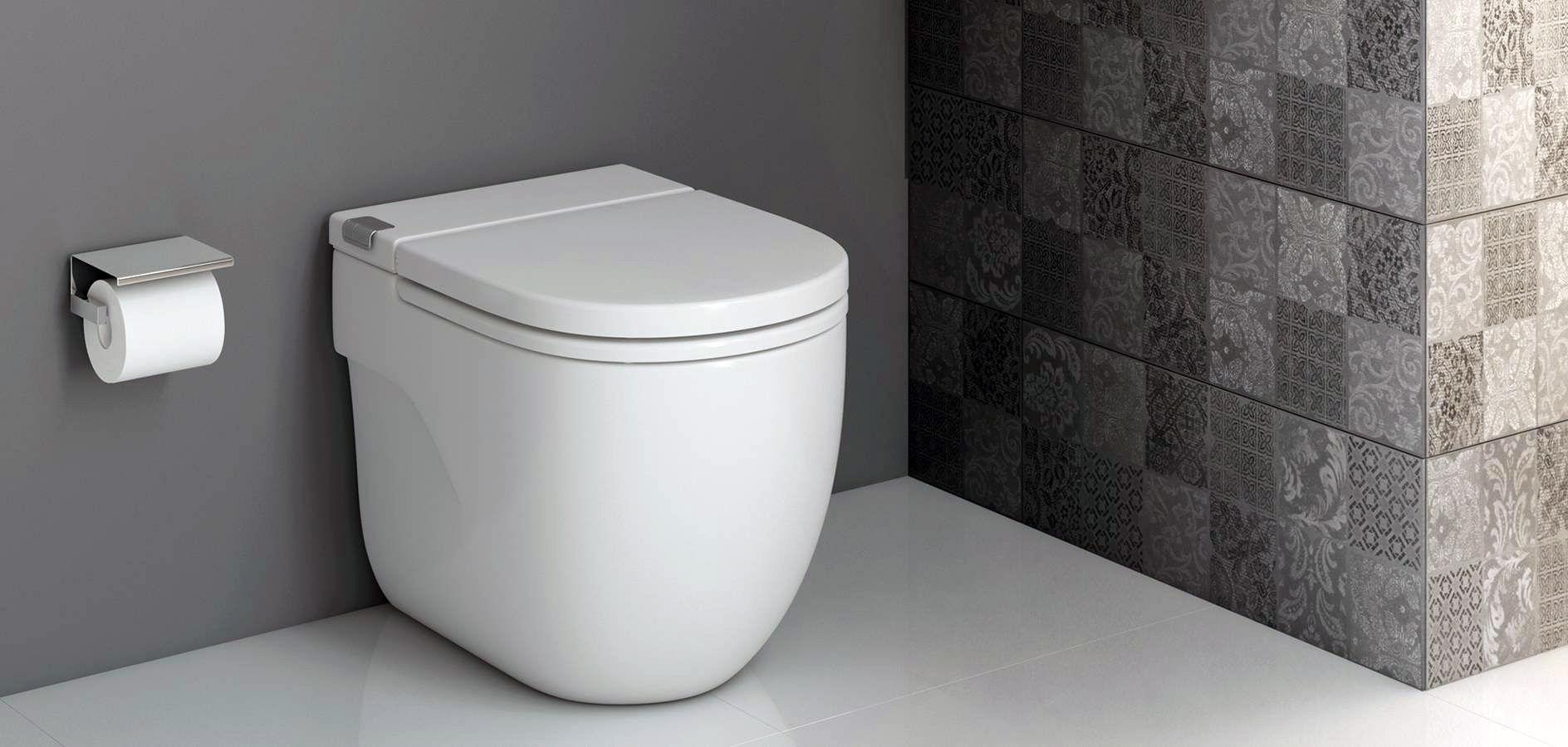 Sleek Toilet Design