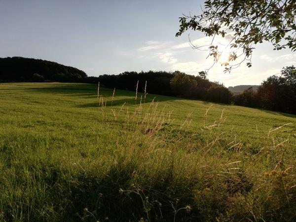 Rhön Naturpark