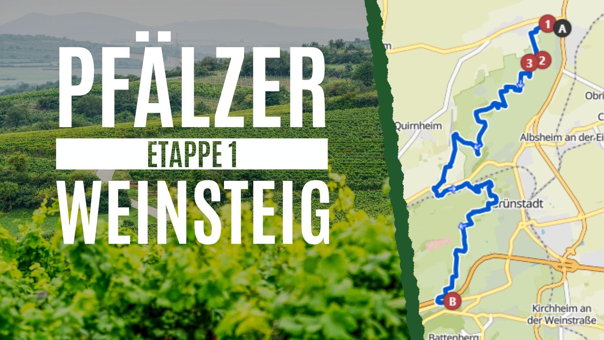 Pfälzer Weinsteig Etappe 1 - Von Bockenheim nach Neuleiningen