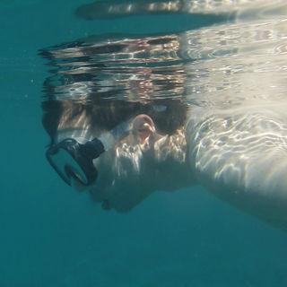 schnorcheln auf den malediven