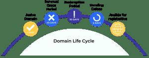 Domain Life Cycle