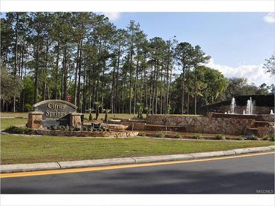 Elfyer - Citrus Springs, FL House - For Sale