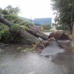 A legnagyobb viharok okozója maga az ember!
