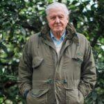 2019 legfontosabb dokumentumfilmje – Attenborough nem finomkodik