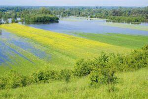 Az agrártárca csatlakozott a klímavédelmi kampányhoz - ClimeNews
