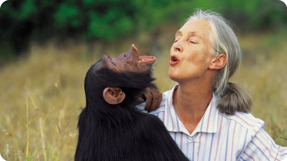Jane Goodall – gondolatok