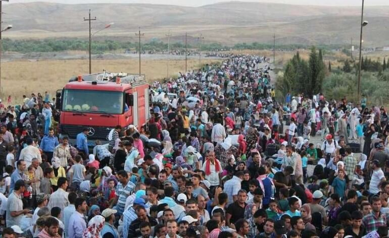 The Guardian – migráció és valóságshow