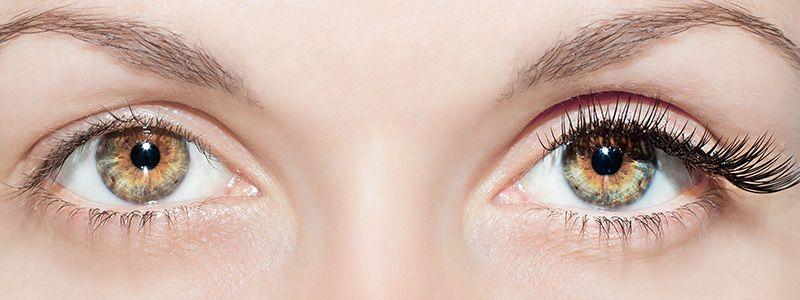 Eyelash Hair Transplant Methods