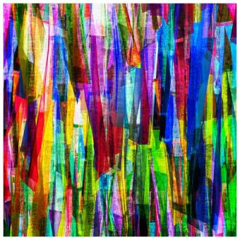 CLOAKS OF COLOR - Limited Edition of 1 Artwork by Scott Gieske