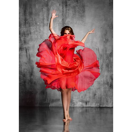 ✅ Premium Acrylic Wall Art Red Dancer | VivaSalotti.com | pic1