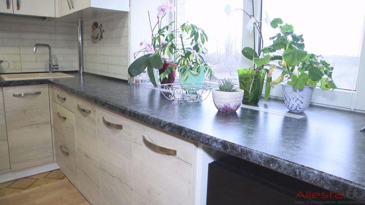 kitchen10 049 23 748x421 - Кухня №10-049 фото и цены