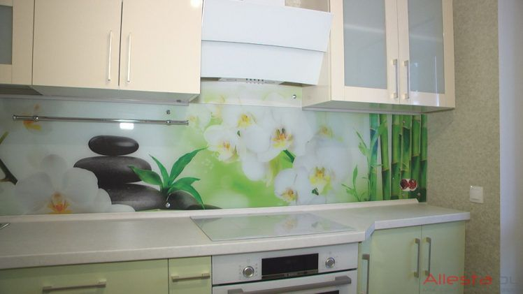 kitchen8 049 3 748x421 - Кухня №08-049 фото и цены