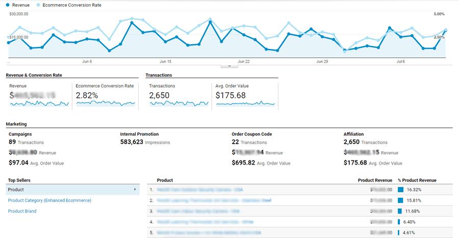 Google Analytics Master View renevue