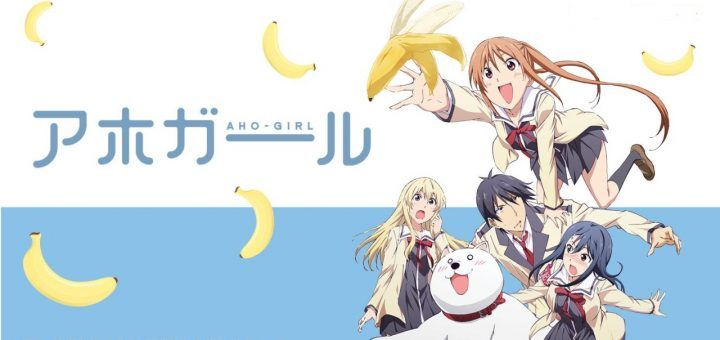 cover aho girl