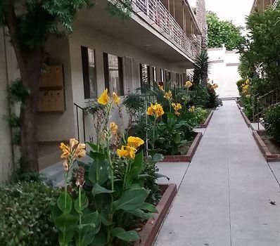 property 621-625 Hyde Park Blvd. #1
