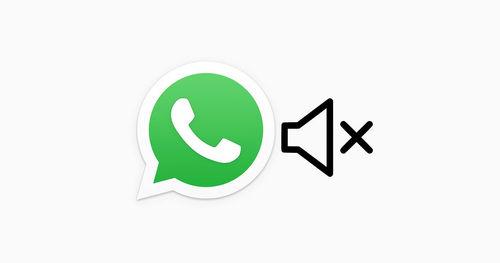 වීඩියෝ හුවමාරු කරගැනීමට පෙර එම වීඩියෝ වල sound mute කිරීමේ හැකියාව WhatsApp Beta වෙත ලබා දීමට කටයුතු කරයි
