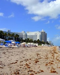 Top 10 Tourist Attractions in Miami, Florida