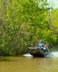 20 Best Things To Do in Lafayette, Louisiana, for First-Timers