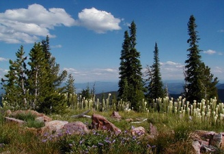 Top 10 Tourist Attractions in Missoula, Montana