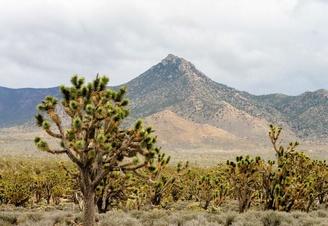 Phoenix, Arizona Top 10 Attractions