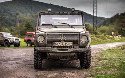 Terrain expedition - Bieszczady