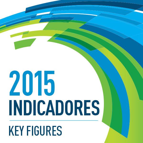 Anuário Estatístico de Segurança Rodoviária - Indicadores 2015