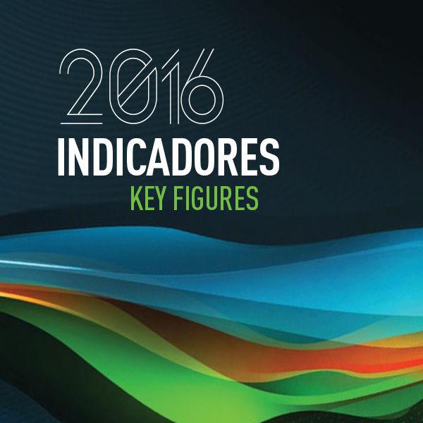 Anuário Estatístico de Segurança Rodoviária - Indicadores 2016