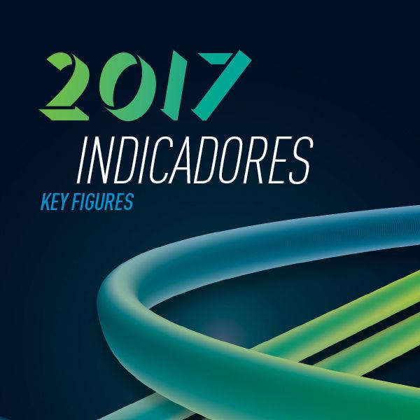 Anuário Estatístico de Segurança Rodoviária - Indicadores 2017