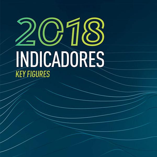 Anuário Estatístico de Segurança Rodoviária - Indicadores 2018