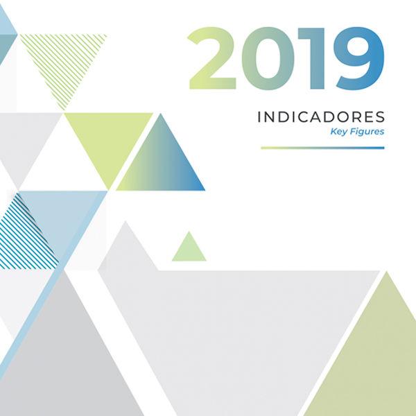 Anuário Estatístico de Segurança Rodoviária - Indicadores 2019