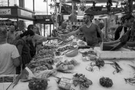 Food market in Genoa