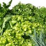Productos Ecológicos; Beneficios para la Salud