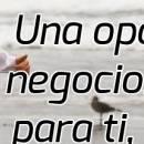 Tu Negocio de Marketing Multinivel es un Negociete o un Negocio Importante