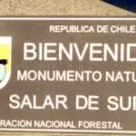 Monumento Nacional Salar de Surire