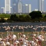 Dubái, un Paraíso Turístico