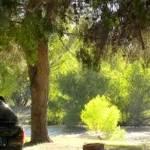 Camping el Solsonès, un Camping Familiar y Rural de 1ª Categoría