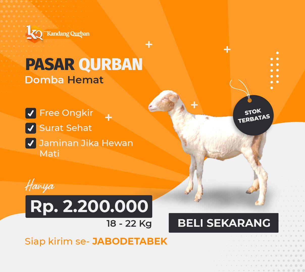 Kandang Qurban Domba Hemat