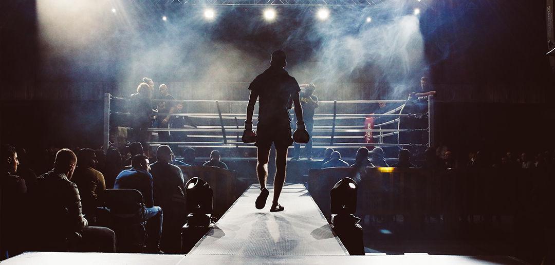 Fight the Lifelong Battles