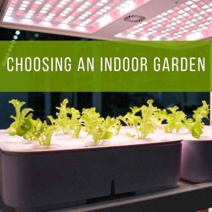 Choosing An Indoor Garden